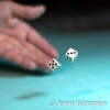 PPG1415-500-Throwing the dice_Jenny Goodman-