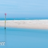 PPG1617-750-Tropical Hayle-017-